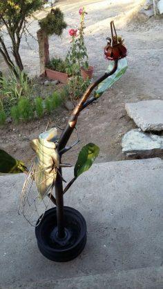 Chicharra en planta